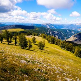 French Alps by Bogdan Penkovsky - Landscapes Mountains & Hills ( warm, tracking, trees, travel, high )