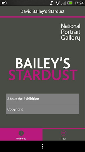 David Bailey's Stardust