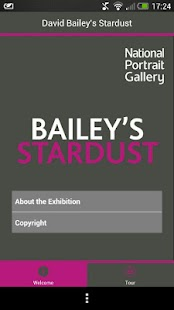 David Bailey's Stardust - screenshot thumbnail