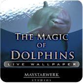 dolphin live wallpaper clock