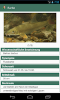 Screenshot of Fische OÖ - Schonbestimmungen
