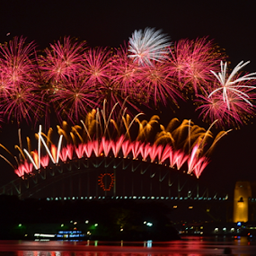 First Display by Kamila Romanowska - Abstract Fire & Fireworks ( lights, new year, 2015, harbour, australia, nye, fireworks, celebration, bride, sydney )