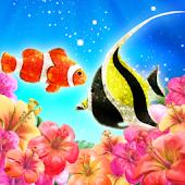 Tropical Fish LWP Trial