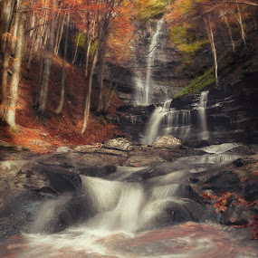 FALL IN LOVE by Paolo Lazzarotti - Landscapes Forests ( autumn, green leaves, red leaves, waterfall, long exposure, rocks,  )