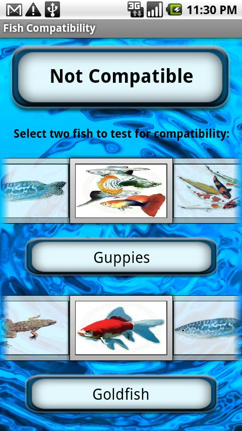Saltwater fish compatibility tool of fish for Saltwater fish compatibility chart