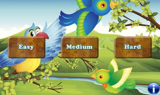 Birds 為幼兒和孩子們的記憶遊戲