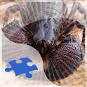 Scorpions Jigsaw Puzzle logo