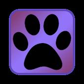 Animal Slider
