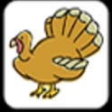 Thanksgiving Matching icon