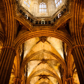 heavenly ceilings... by Tanya Popove - Buildings & Architecture Architectural Detail ( church, arches, stone, builders, cathedral, barcelona, master )