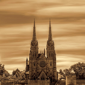 St Marys Cathedral by Michael Lucchese - Buildings & Architecture Places of Worship ( d810, church, australia, cathedral, long exposure, nsw, landscape, nikon, st marys, sydney )
