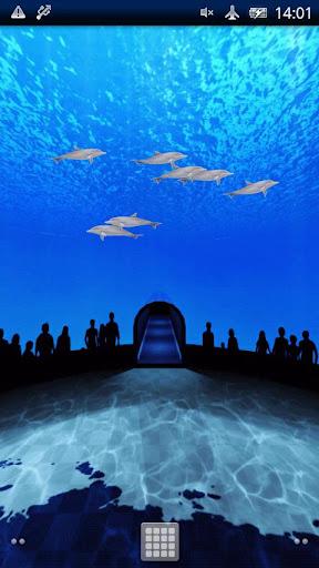 イルカの世界Trial