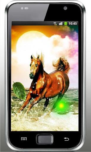 Horses Sounds live wallpaper