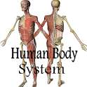 Human Body System icon