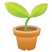 우리집 식물관리