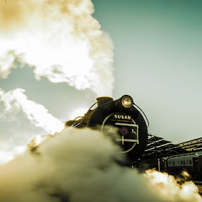 by Farrah-Diba Sing - Transportation Trains ( johannesburg, steam train, train, trains,  )