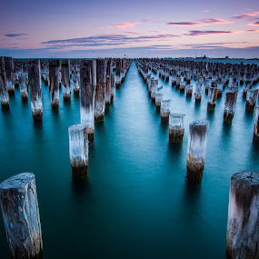 Princes Pier by Cory Marshall - Landscapes Waterscapes