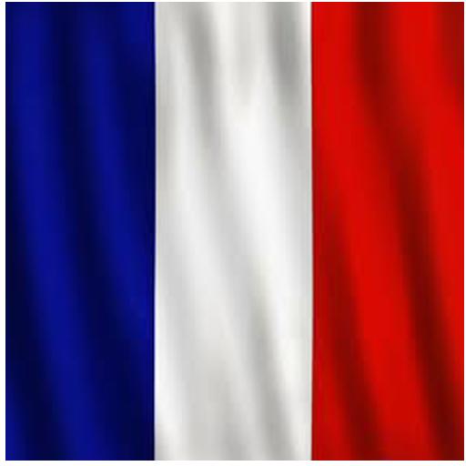 Maior Guia de Francês