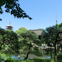 Senso-ji Temple garden(JP038)