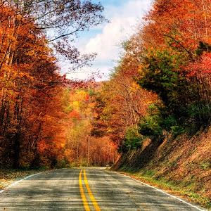 Beaverdam Road in Fall.jpg