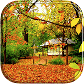 Autumn leaf live wallpaper