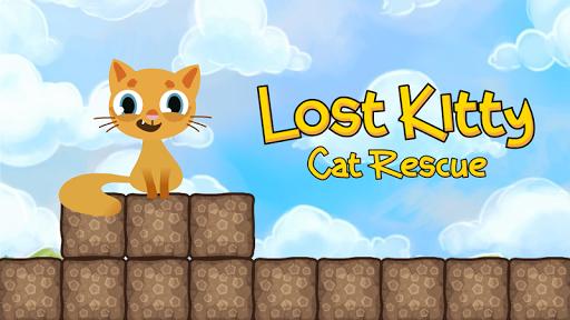 キティを失った:猫レスキュー