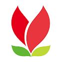 Q8Flowers icon