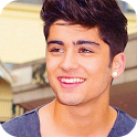 Zayn Malik Wallpapers 2014 icon