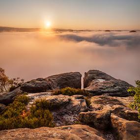 Kleiner Winterberg in the morning sun by Pavel Klásek - Landscapes Sunsets & Sunrises ( park, national, saxon, sandstone, rock, valley, boulder, morning, spring, fog, autumn, fall, switzerland, mist )