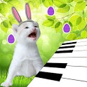 3D Singing Bunny Kitten Piano icon