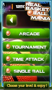 3D Real Basket Ball Mania v1.0.8