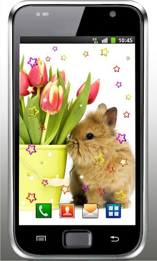 Bunny n Flowers live wallpaper
