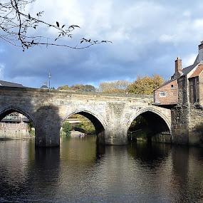 Durham by Shona McQuilken - Buildings & Architecture Bridges & Suspended Structures ( durham, reflection, sunshine, bridge, river )