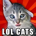 LOLCats - Funny cats pictures icon