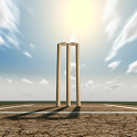 Cricket Player Manager icon