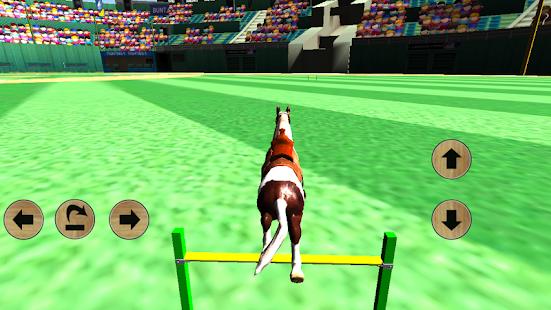 Horse Simulator 3D 2014