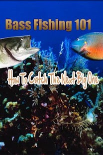 Bass Fishing 101 - screenshot thumbnail