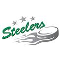 Bietigheim Steelers icon