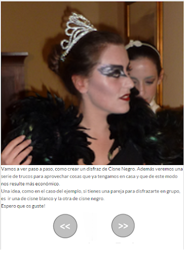 BlackSwan Costume