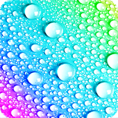 Water Drops Rainbow LWP