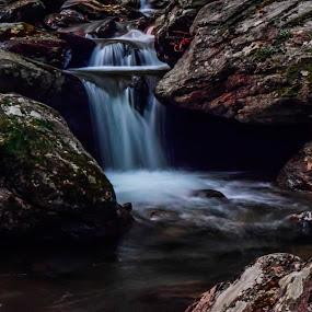 by Jon Kowal - Nature Up Close Water