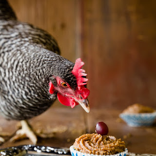 Cupcakes for Chickens