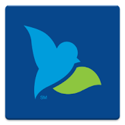 App Bluebird by American Express APK for Windows Phone