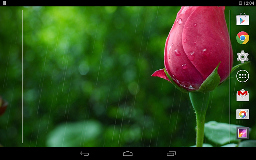Rain Rose Live Wallpaper  screenshots 11