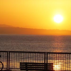 3-3-15 Silho at Sunrise.jpg