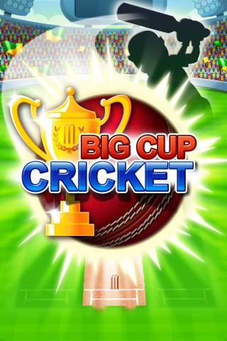 Big Cup Cricket Premium - screenshot