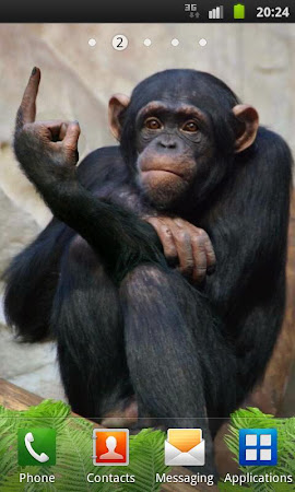 Funny Monkey Live Wallpaper 1.2.1 screenshot 322693