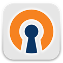 OpenVPN Settings icon