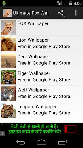 Ultimate Fox Wallpapers