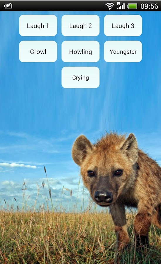 Laughing Hyenas- screenshot